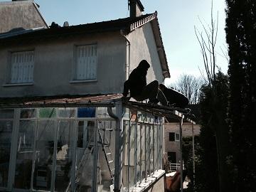 pendant reparation veranda paris